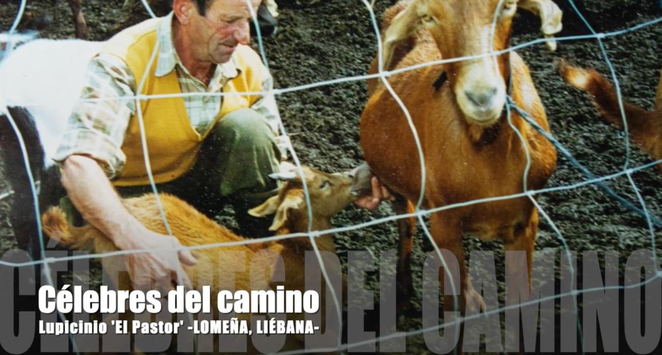 Lupicino, pastor de la zona de Liébana