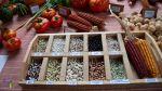 alubias de cocina en el camino lebaniego
